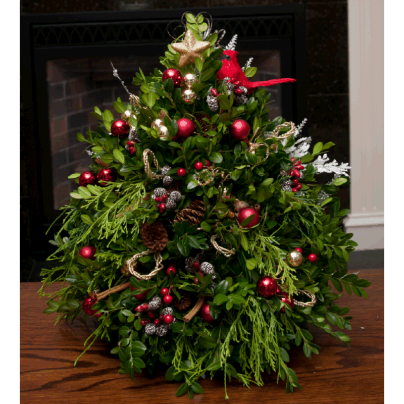 Goodlife programs activities boxwood christmas tree